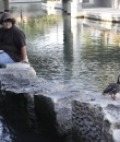 River scene 1 send